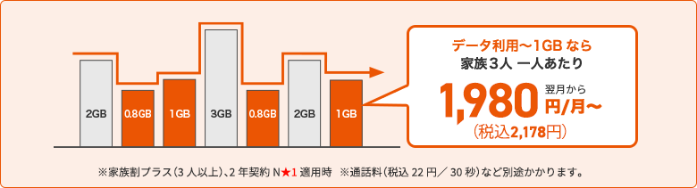 ピタットプラン 4G LTE